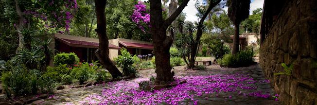 Bergwaters Garden Room Exterior